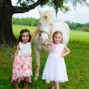 The Pony Life LLC - Pony Party / Outdoor Party Entertainment in Chipley, Florida