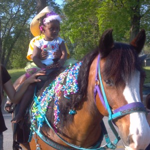 The Pony Party Express - Pony Party / Children's Party Entertainment in Bellville, Ohio
