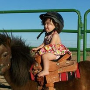 The Pony Patch - Pony Party in Las Cruces, New Mexico