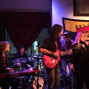 The Purple Valley - Party Band / Halloween Party Entertainment in Ithaca, New York