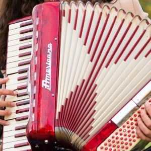 The Red Accordion Ensemble - Acoustic Band in Washington, District Of Columbia