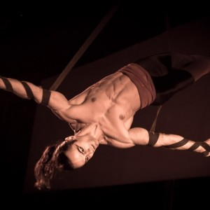 The Specialist - Aerialist in New York City, New York