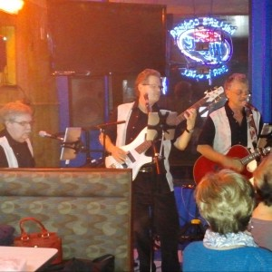 The Barking Dogs - Easy Listening Band in Minneapolis, Minnesota