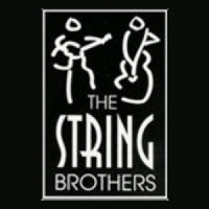 The String Brothers - Classical Ensemble / Strolling Violinist in Buffalo, New York