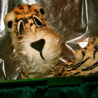 The Tanglewood Puppets - Puppet Show in Louisburg, North Carolina