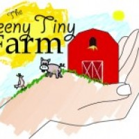 The Teeny Tiny Farm - Petting Zoos for Parties / Reptile Show in Smithfield, Virginia