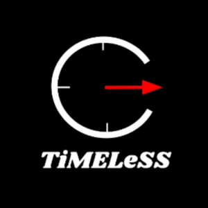 The TiMELeSS Band - Cover Band in Flossmoor, Illinois
