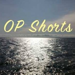 OP Shorts - Cover Band in New York City, New York