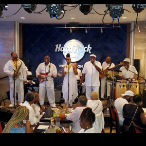 The Tribe Band & Show - Party Band / Soul Band in Washington, District Of Columbia