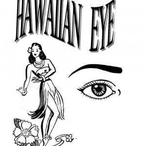 HAWAIIAN EYE BAND - Variety Show / Variety Entertainer in Ocala, Florida