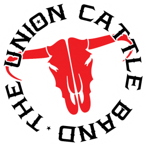 The Union Cattle Band - Cover Band / College Entertainment in Aberdeen, South Dakota