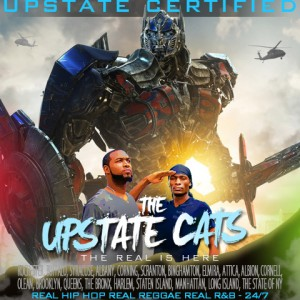 The Upstate Cats - Caribbean/Island Music / Beach Music in New York City, New York