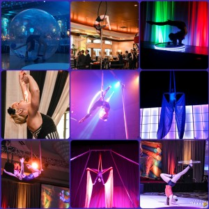 The Vagabonds of The Runaway Circus - Circus Entertainment / LED Performer in Barrington, Illinois