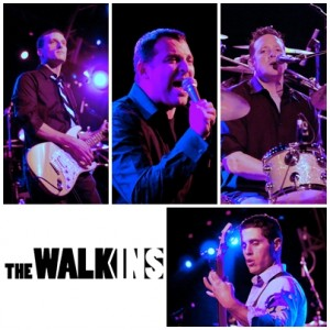 The Walk-ins - Cover Band / College Entertainment in Tinley Park, Illinois
