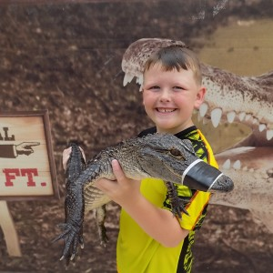 Alligator and Reptile Adventure