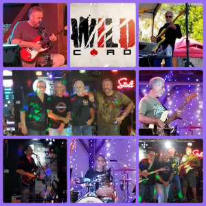 The Wildcard Band - Classic Rock Band in Daytona Beach, Florida