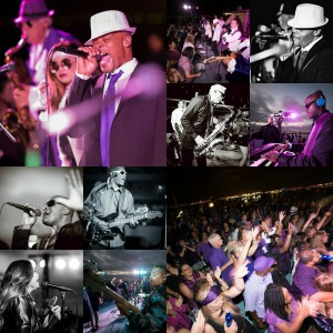 The Wildside Band SD - Cover Band / Prince Tribute in San Diego, California