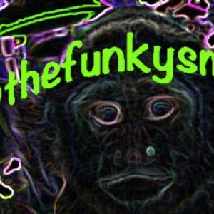 thefunkySmonkey - Club DJ in Los Angeles, California