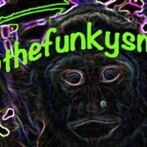 thefunkySmonkey - Club DJ in Los Angeles, California
