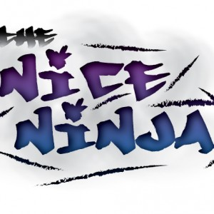 theNiceNinja - Club DJ in Cincinnati, Ohio