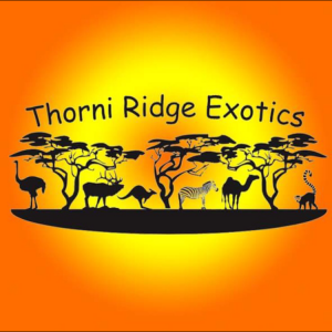 Thorni Ridge Exotics Petting Zoo