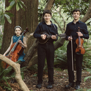 Three for Joy - Celtic Music in Portland, Oregon