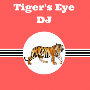 Tiger's Eye Dj Company - DJ / College Entertainment in Redondo Beach, California