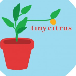 Tiny Citrus Films - Video Services in Philadelphia, Pennsylvania
