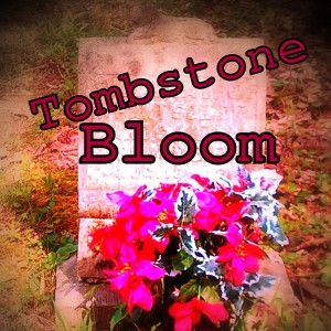 Tombstone Bloom - Rock Band / Classic Rock Band in Bloomington, Indiana