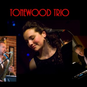 Tonewood Trio - Jazz Band in Eugene, Oregon
