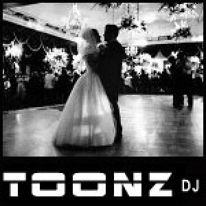 Toonz DJ - Mobile DJ / Outdoor Party Entertainment in Billings, Montana