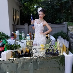 Professional in Bartending and Promo Modeling - Bartender / Wedding Services in Brooklyn, New York