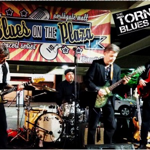 Tornado Blues Band - Americana Band in Raleigh, North Carolina