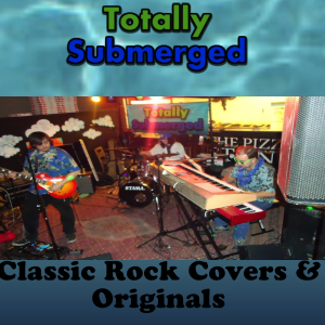Totally Submerged - Cover Band / Wedding Musicians in Chester, Vermont