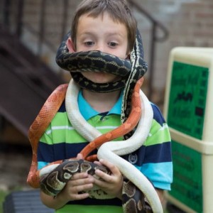 Traveling World of Reptiles - Animal Entertainment in Chicago, Illinois