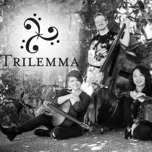 Trilemma - Cover Band / String Trio in Portland, Oregon