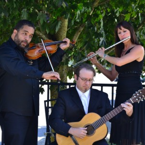 Trio de Muse - Classical Ensemble / Holiday Party Entertainment in Vancouver, Washington