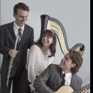 Trio Delphi - Classical Ensemble / Wedding Musicians in Garden City, New York