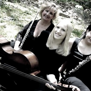 Trio Jolie - Classical Ensemble / String Trio in Reading, Pennsylvania