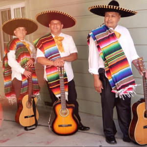 Chuy Y Su Trio La Bamba - Mariachi Band / Spanish Entertainment in Concord, California