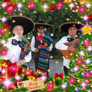 Trio Palenque  - Mariachi Band in San Jose, California