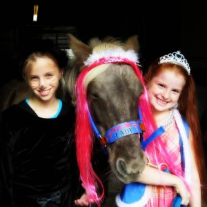 Triple L Ranch LLC - Pony Party / Outdoor Party Entertainment in Quakertown, Pennsylvania