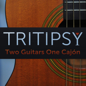 Tritipsy - Acoustic Band / 1990s Era Entertainment in Los Angeles, California