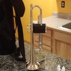 Trumpet Musician - Trumpet Player in Waldo, Wisconsin