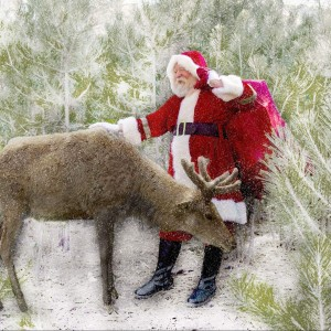 Tucson Santa Experience - Santa Claus / Holiday Party Entertainment in Tucson, Arizona