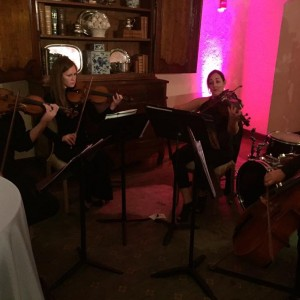 Tulsa Rock Quartet - Classical Ensemble / Holiday Party Entertainment in Tulsa, Oklahoma