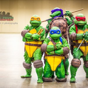 Turtle Power Entertainment - Costumed Character in Dallas, Texas