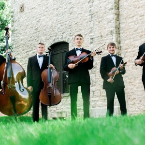 Twenty Strings Ensemble - Classical Ensemble in Springfield, Missouri