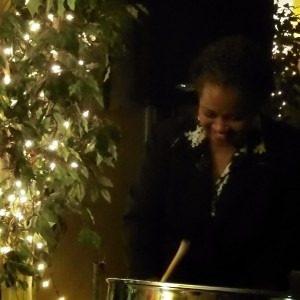 Ultimate Steel Band - Steel Drum Player in Hollywood, Florida