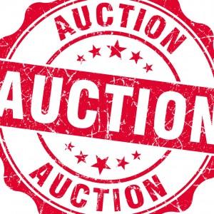 Velocity Auction Company - Auctioneer in Lexington, South Carolina